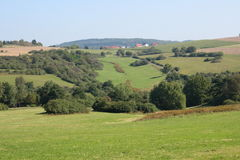 Hills. A hilly landscape with fields, meadows and forest Royalty Free Stock Image