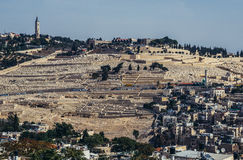 Hills in Jerusalem Royalty Free Stock Image