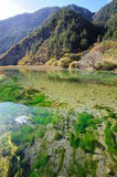 Hills and  lake in Jiuzhaigou Royalty Free Stock Photo