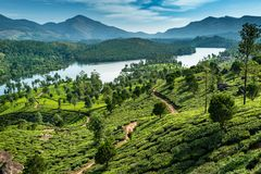 Hills , lake and tee plantations in Kerala stock photos
