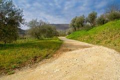 Hills landscape. Beautiful landscape hill in summer time stock images
