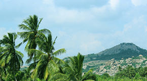 Hills landscape Royalty Free Stock Image