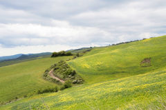 Hills landscape with field and cloudy sky Stock Photo