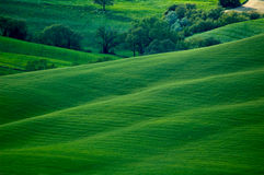 Hills like music Royalty Free Stock Images