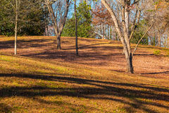 Hills in Lullwater Park, Atlanta, USA. Hills and bare trees in the Lullwater Park in sunny autumn day, Atlanta, USA Royalty Free Stock Image
