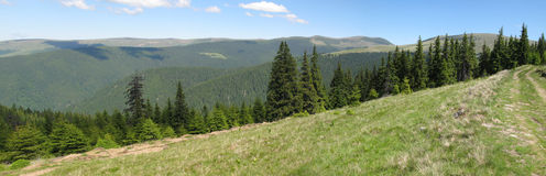Hills, meadows and forests Royalty Free Stock Photo