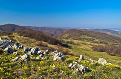 Hills and meadows of Homolje mountains at early spring Stock Image