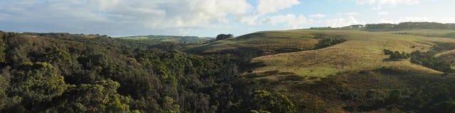 Hills in Mornington Peninsula Royalty Free Stock Photo