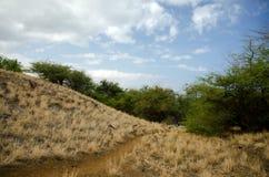 Hills near Hapuna beach Stock Photo