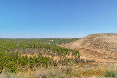 Hills of the Negev Desert Royalty Free Stock Photo