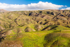 Hills of New Zealand Royalty Free Stock Image