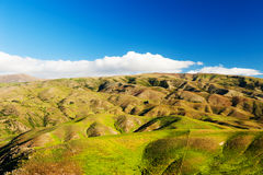 Hills of New Zealand Stock Photography