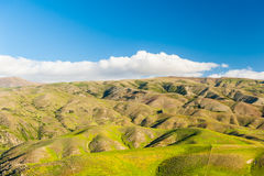 Hills of New Zealand Royalty Free Stock Photos