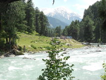 Hills, Pahalgam, Jammu & Kashmir, India. Hills near lidder River, Pahalgam, Jammu & Kashmir. Lidder river originates from Kolhoi Glacier near Sonamarg and gives Royalty Free Stock Photo
