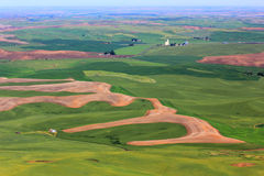 Hills of Palouse Stock Images