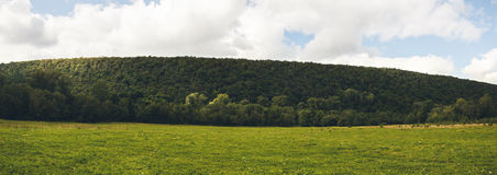 Hills panorama. Hills, forest and lawn with sky above Royalty Free Stock Image