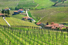 Hills of Piedmont. Northern Italy. Stock Images