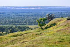 The hills and plains in the central part of Russia. Stock Photo