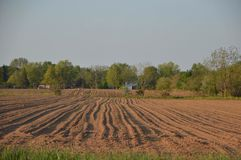 Freshly ploughed arable land. Freshly plowed  arable land, with furrows suggesting potatoes have already been planted, background of trees and blue sky Stock Image