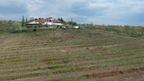 Vine cultivated area near Ploiesti , Romania, aerial footage. Hills with rows of vine cultivated area in spring , aerial drone footage near Ploiesti City stock video footage