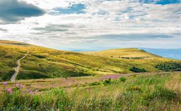 Hills of Runa mountain in late summer. Lovely landscape with fire weed flowers in front and forest in the distance. road passes the slope Royalty Free Stock Images