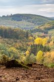 Hills scenery with autumn forest stock photo