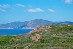 Hills and sea. In Porticciolo Stock Photos