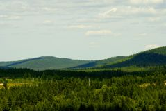Hills of Siberia. The Siberian wood. Russia, the Far East Royalty Free Stock Photo