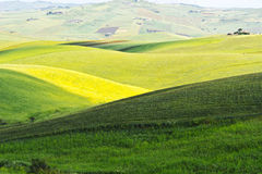 Hills of Sicily Royalty Free Stock Photo