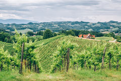 Hills of Southern Styria Stock Photo