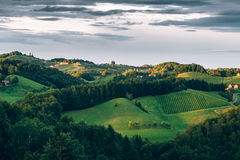Hills of the Southern Styria Wine Trail Stock Photo