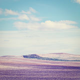 Hills of Spain Royalty Free Stock Photos