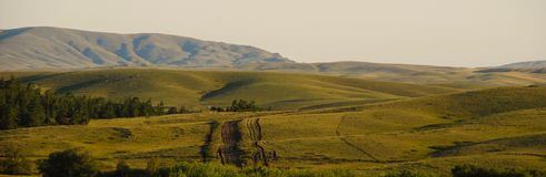 Hills and steppe. Beautiful nature, Mountain landscape, soon sunset, two lonely trees Stock Photos