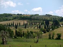The hills surrounding of Sant'Antimo Royalty Free Stock Photo