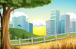Hills with tall buildings nearby Stock Image