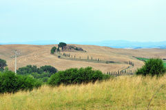 Hills of Toscana. Royalty Free Stock Photography