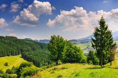 Hills with trees and forests. In front of mountains Stock Photo
