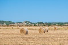 Hills of Tuscany with cultivated fields with hay bales in the foreground royalty free stock image