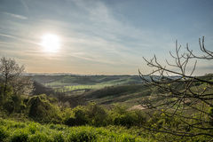 Hills of Tuscany, Italy Stock Image