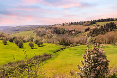 Hills of Tuscany, Italy Royalty Free Stock Images