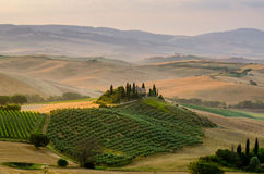 Hills of Tuscany. Italy. Sunrise Stock Photography