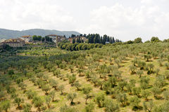 Hills in Tuscany near Artimino Royalty Free Stock Images