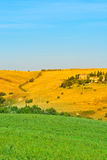 Hills of Tuscany Royalty Free Stock Photo