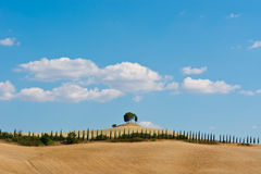 Hills of Tuscany Royalty Free Stock Images
