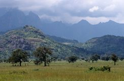 Hills in Uganda Royalty Free Stock Photo