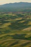 Hills-und Weizenfelder lizenzfreies stockfoto