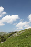 Hills, valley and meadows on Hirao karst zone. Grassland area is beautiful hills, blue skies and bright sunshine was invigorating Stock Photography