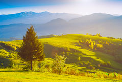 Hills and valleys in morning light Royalty Free Stock Photo