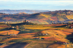Hills and vineyards in autumn in Italy. Stock Photos