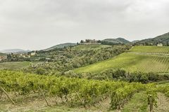 Hills with vineyards and castle Brolio on a rainy day in autumn Royalty Free Stock Photo